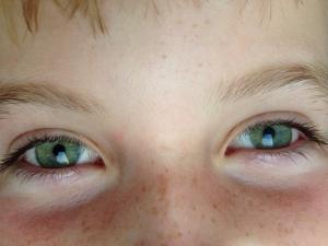 les yeux de Paul