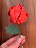 Rose en bouton rouge sur tige